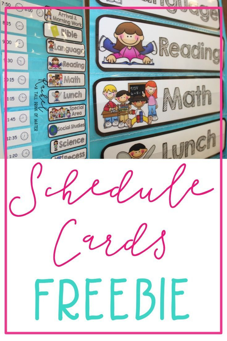 Freebie Schedule Cards | Classroom (When I Go Back
