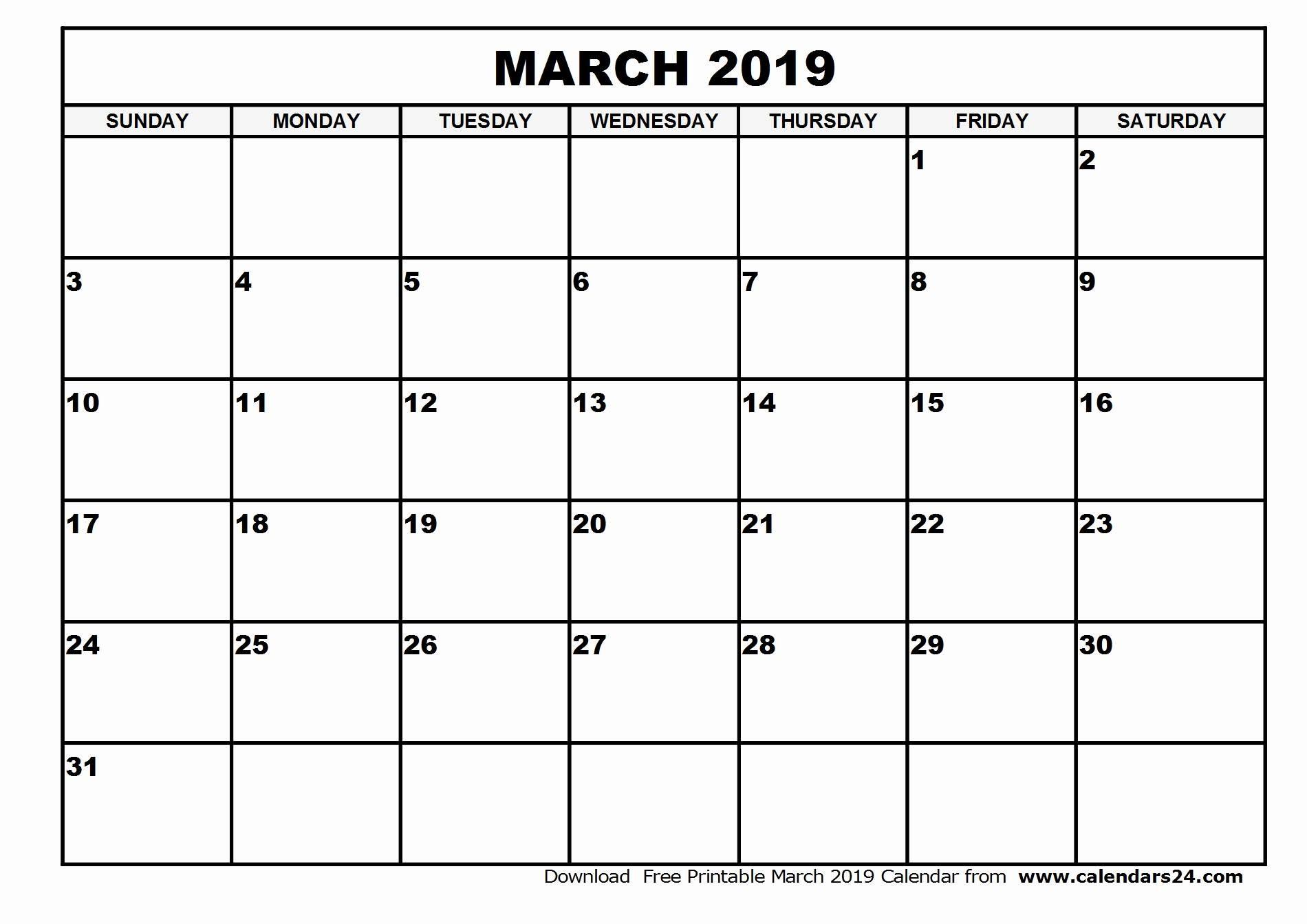009 Editable Monthly Calendar Template Free Printable Blank