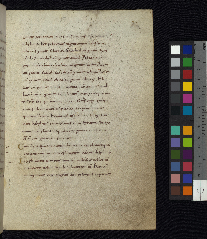 Among Digitized Manuscripts