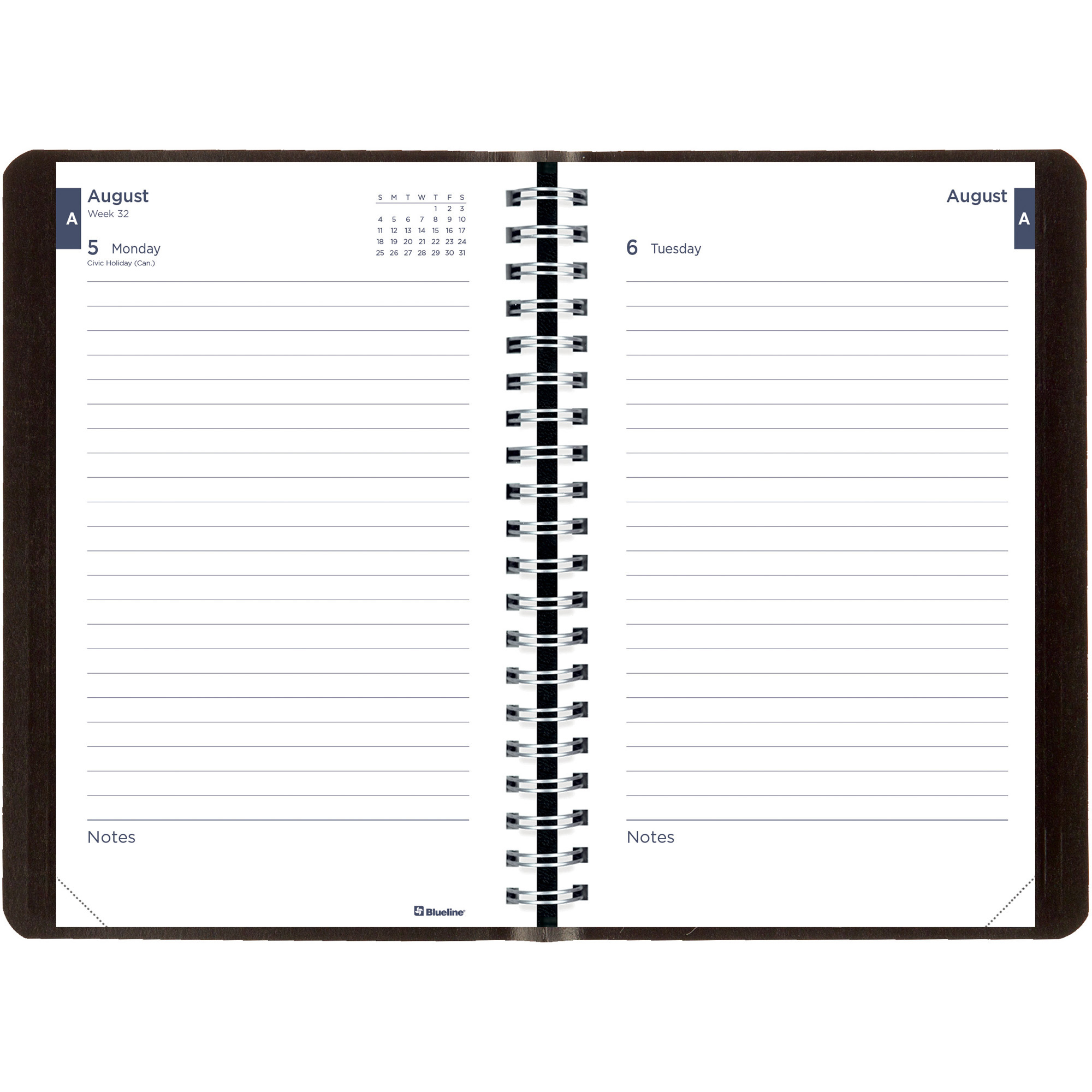 Brownline Academic Daily Appointment Book / Monthly Planner