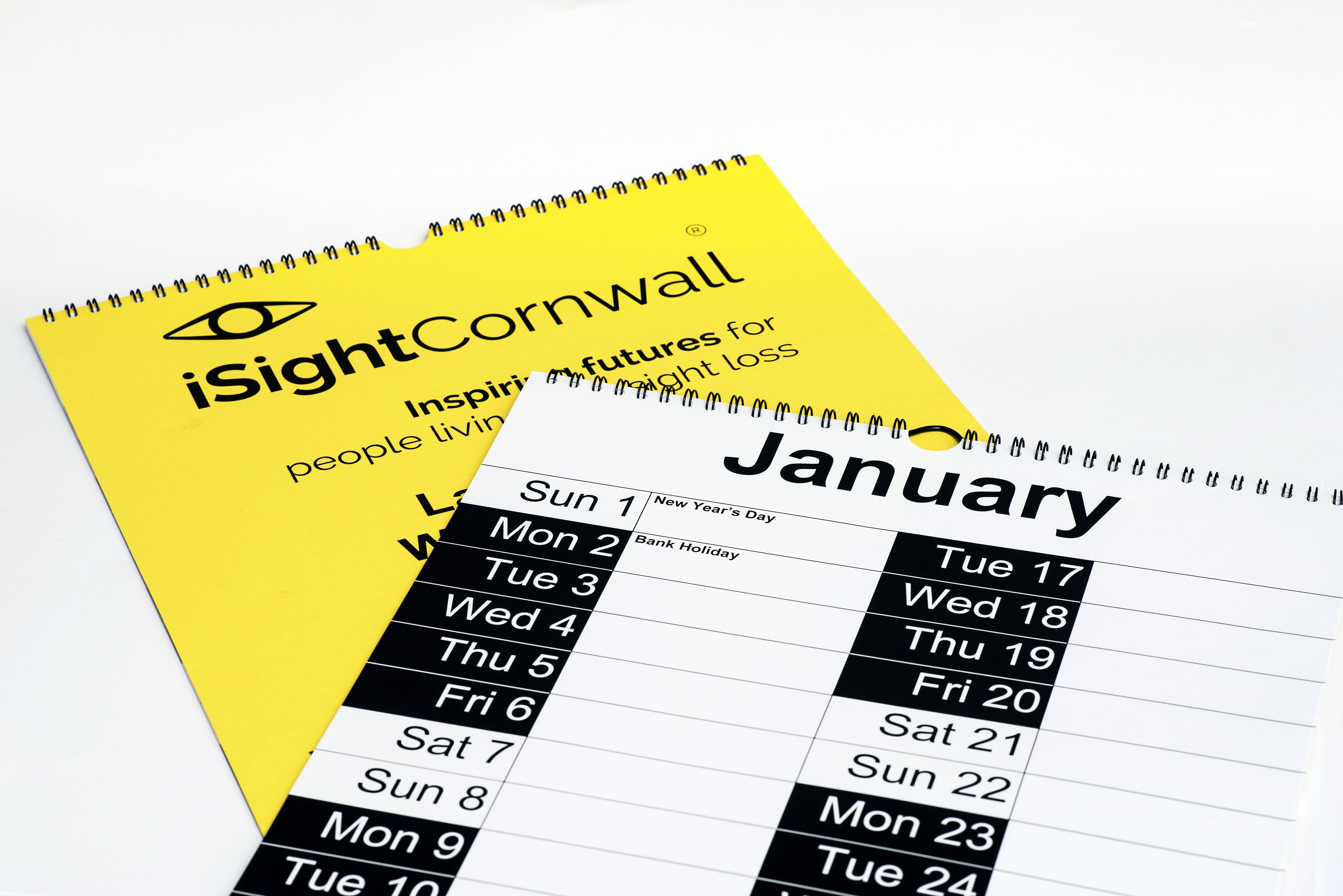 Large Print Wall Calendar 2020