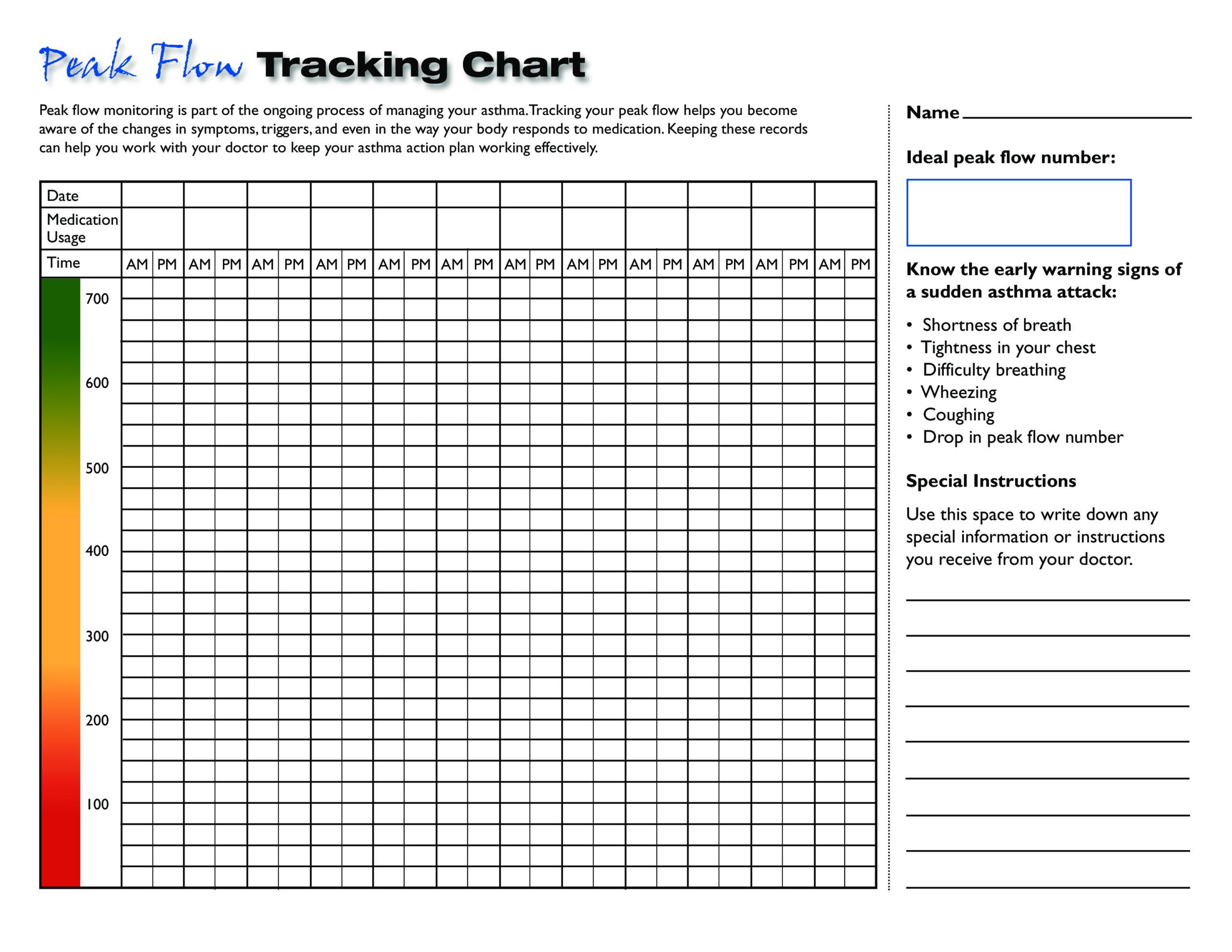 Kostenloses Blank Peak Flow Chart Printable