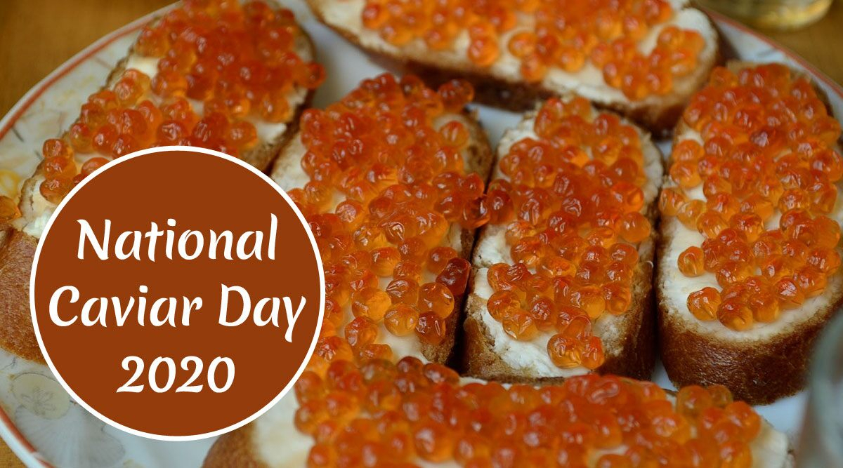 National Caviar Day 2021: Why Is Sturgeon Fish Egg Expensive