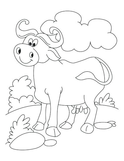 Buffalo Bills Coloring Pages At Getcolorings | Free