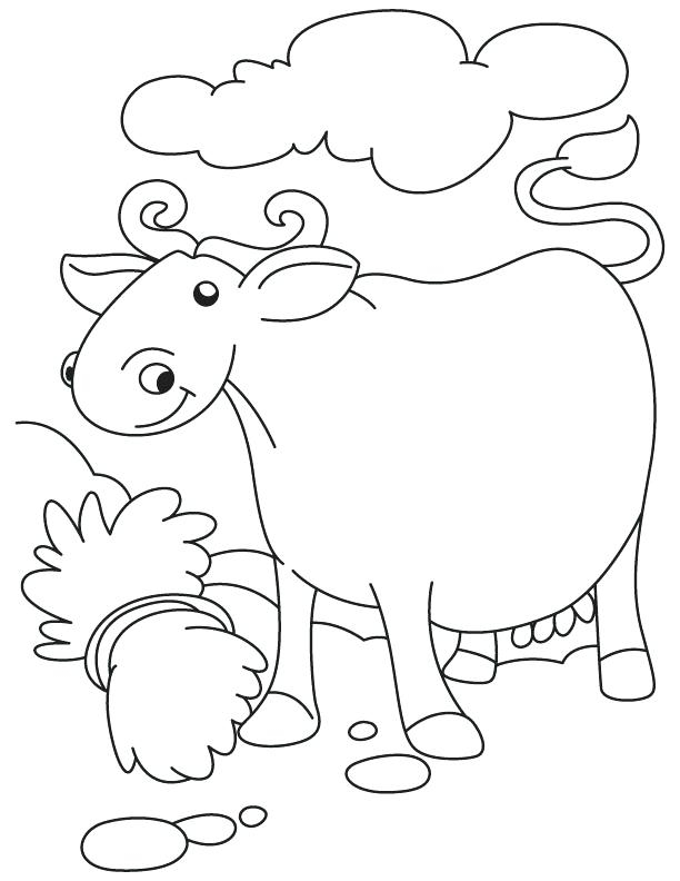 Cape Buffalo Coloring Pages At Getdrawings | Free Download