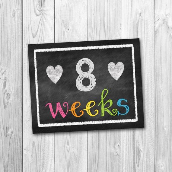 Pregnancy Calendar Countdown Chalkboard Printable Pregnancy